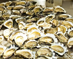 Wheelers Oysters - Redcliffe Tourism