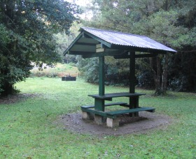 Pine Creek State Forest - Redcliffe Tourism