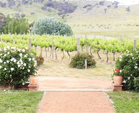 Brindabella Hills Winery - Redcliffe Tourism