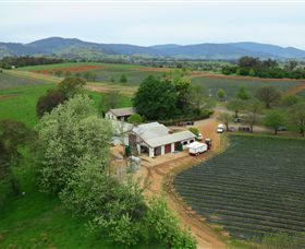 Schmidts Strawberry Winery - Redcliffe Tourism