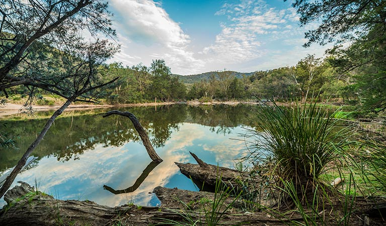 Warrabah National Park - Redcliffe Tourism