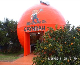 Gayndahs Big Orange - Redcliffe Tourism
