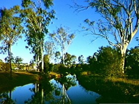 Dingo Creek Park - Redcliffe Tourism