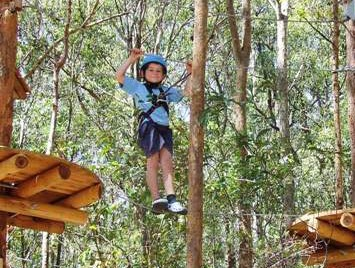 TreeTops Newcastle - Redcliffe Tourism