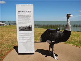 Birdman of the Coorong - Redcliffe Tourism