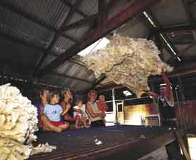 Shear Outback the Australian Shearers Hall of Fame - Redcliffe Tourism