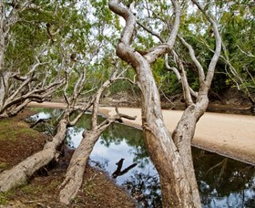 Oyala Thumotang National Park CYPAL - Redcliffe Tourism