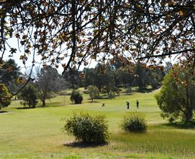 Narrandera Golf Course - Redcliffe Tourism