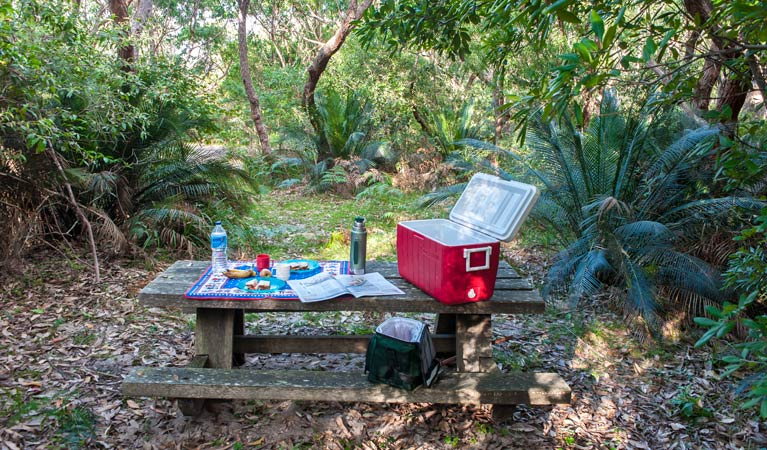 Little Llangothlin picnic area - Redcliffe Tourism
