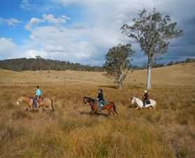 Chapman Valley Horse Riding - Redcliffe Tourism