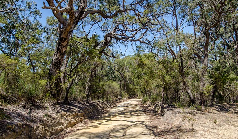 Howes trail - Redcliffe Tourism