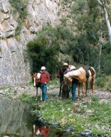 Yarramba Horse Riding - Redcliffe Tourism