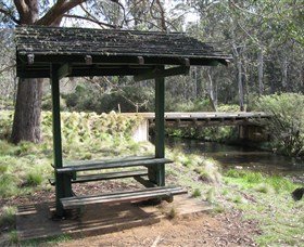 Barrington Tops State Forest - Redcliffe Tourism
