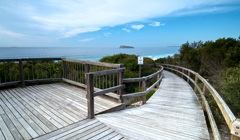 Tea Tree picnic area and lookout - Redcliffe Tourism