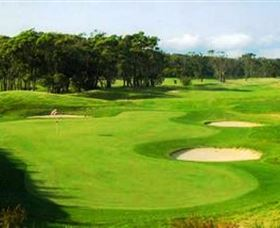 Shoalhaven Heads Golf Club - Redcliffe Tourism