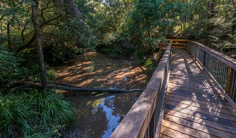 Ms Kellys walking track - Redcliffe Tourism