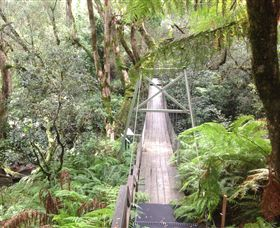 Bemm River Scenic Reserve - Redcliffe Tourism