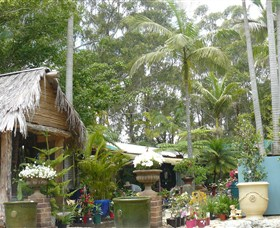 Diamond Waters Garden Nursery - Redcliffe Tourism