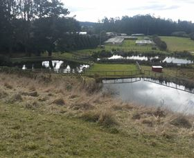 Guide Falls Farm - Redcliffe Tourism
