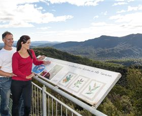 Whyte Hills Lookout - Redcliffe Tourism