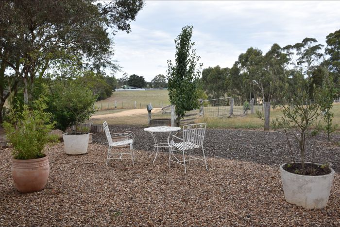 Cygnet Park Country Retreat - Redcliffe Tourism