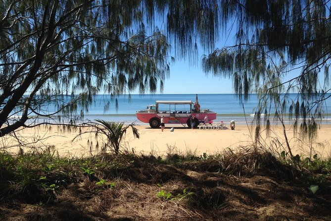 1770 Coastline Tour by LARC Amphibious Vehicle Including Picnic Lunch - Redcliffe Tourism