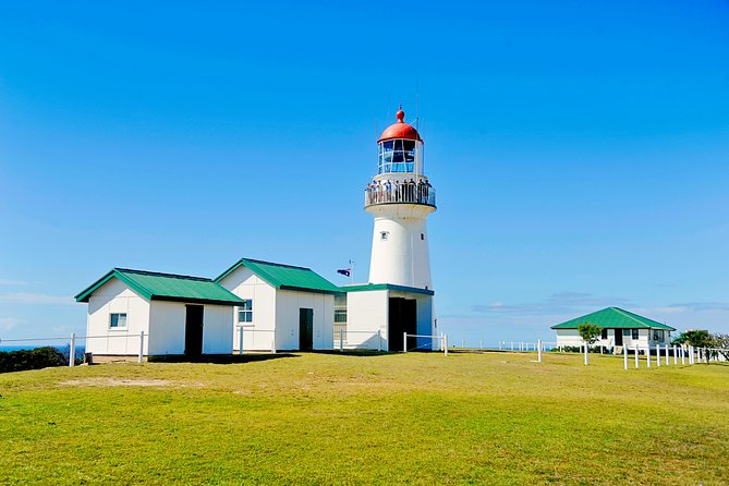 Full-Day 1770 Tour by LARC Amphibious Vehicle Including Sandboarding and Bustard Head Lightstation - Redcliffe Tourism