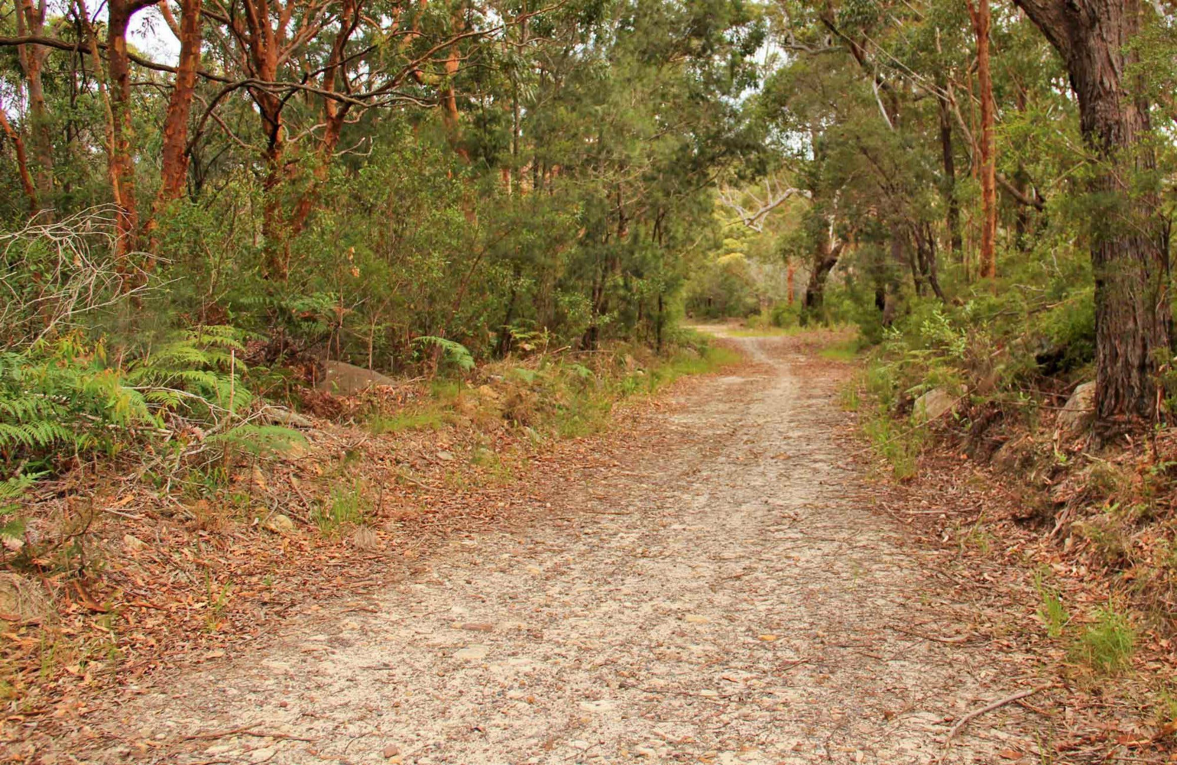 Daleys Point Walking Track - Redcliffe Tourism