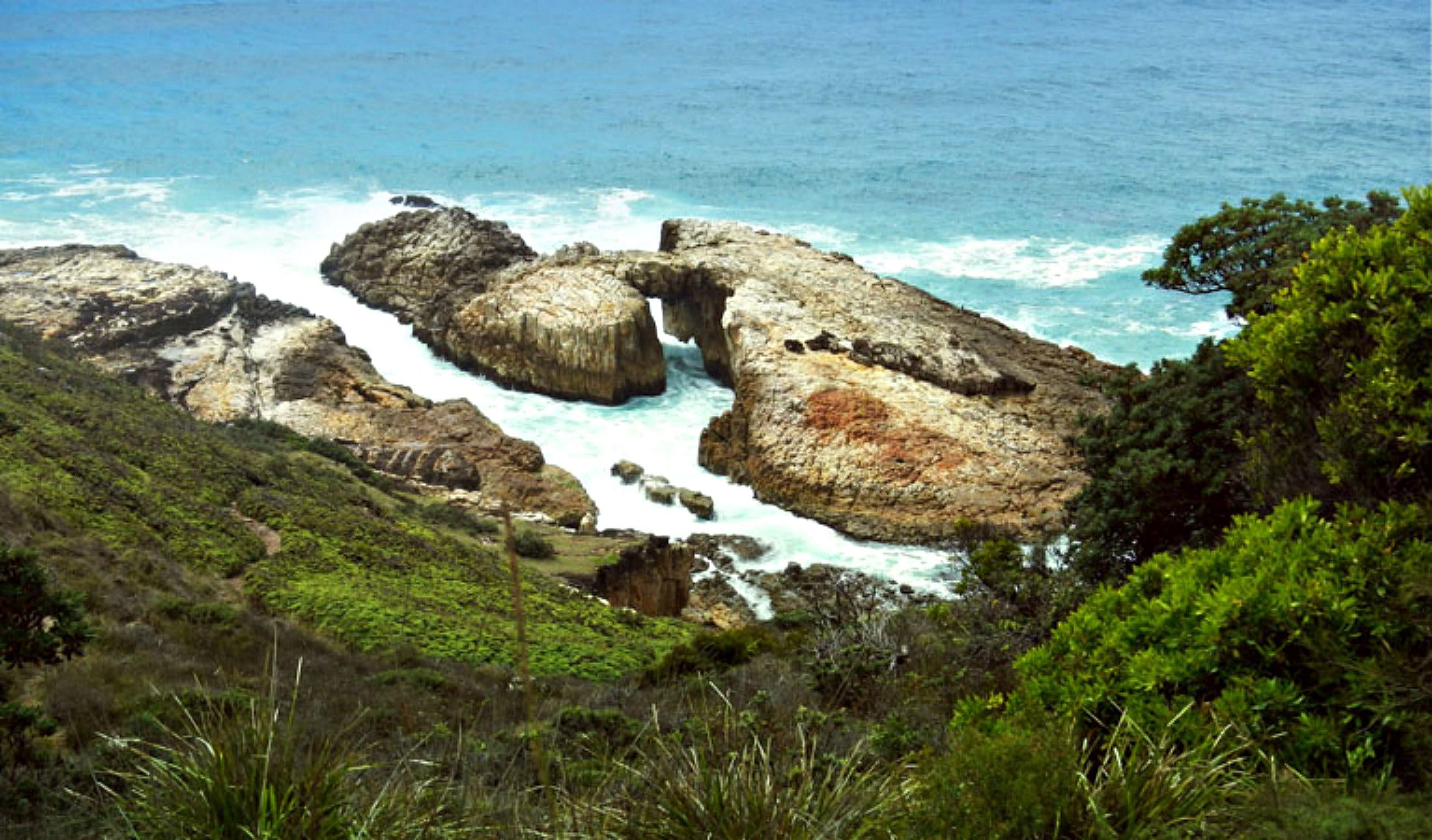 Diamond Head Loop Walk - Redcliffe Tourism