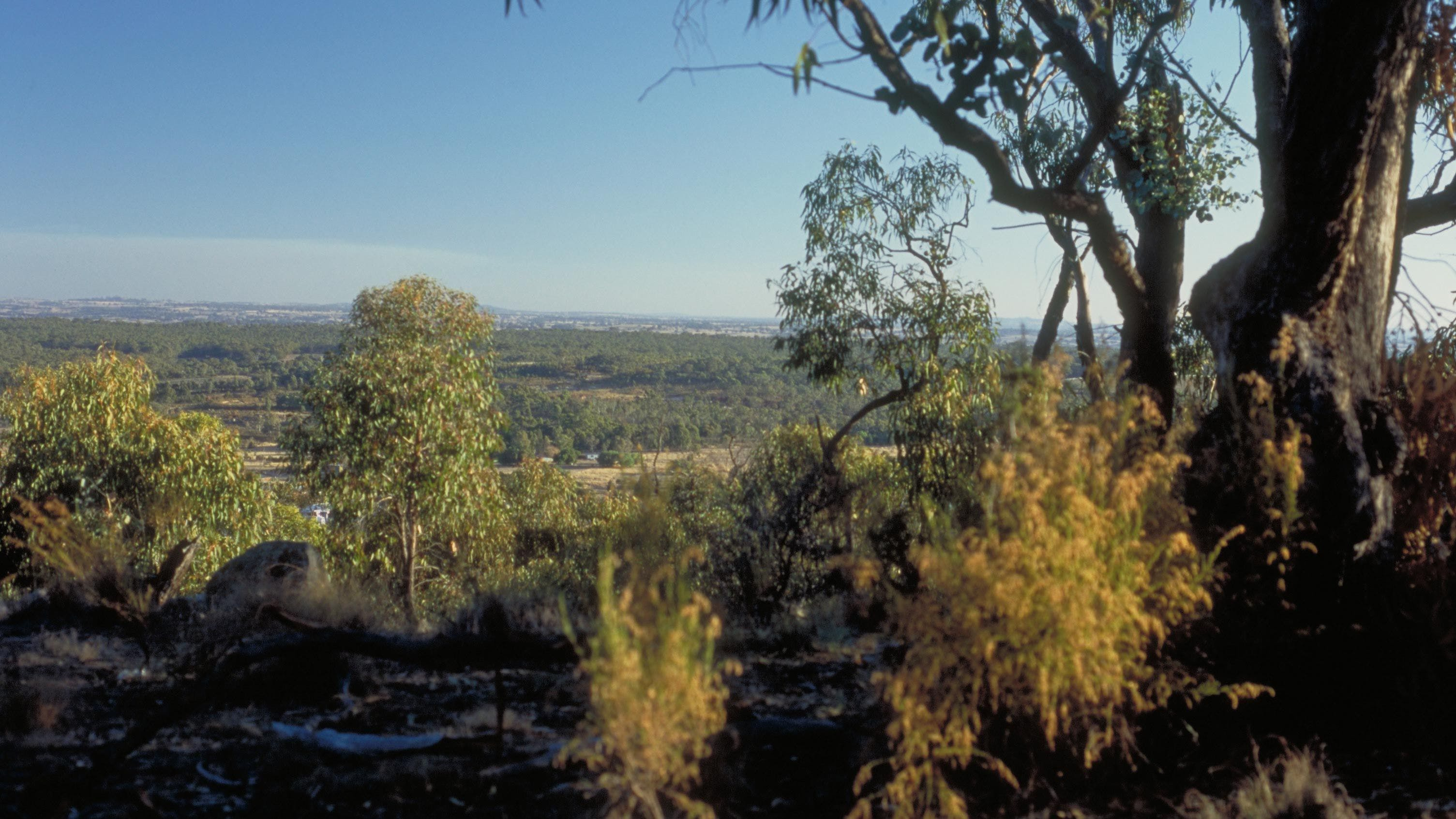 Heathcote-Graytown National Park - Redcliffe Tourism