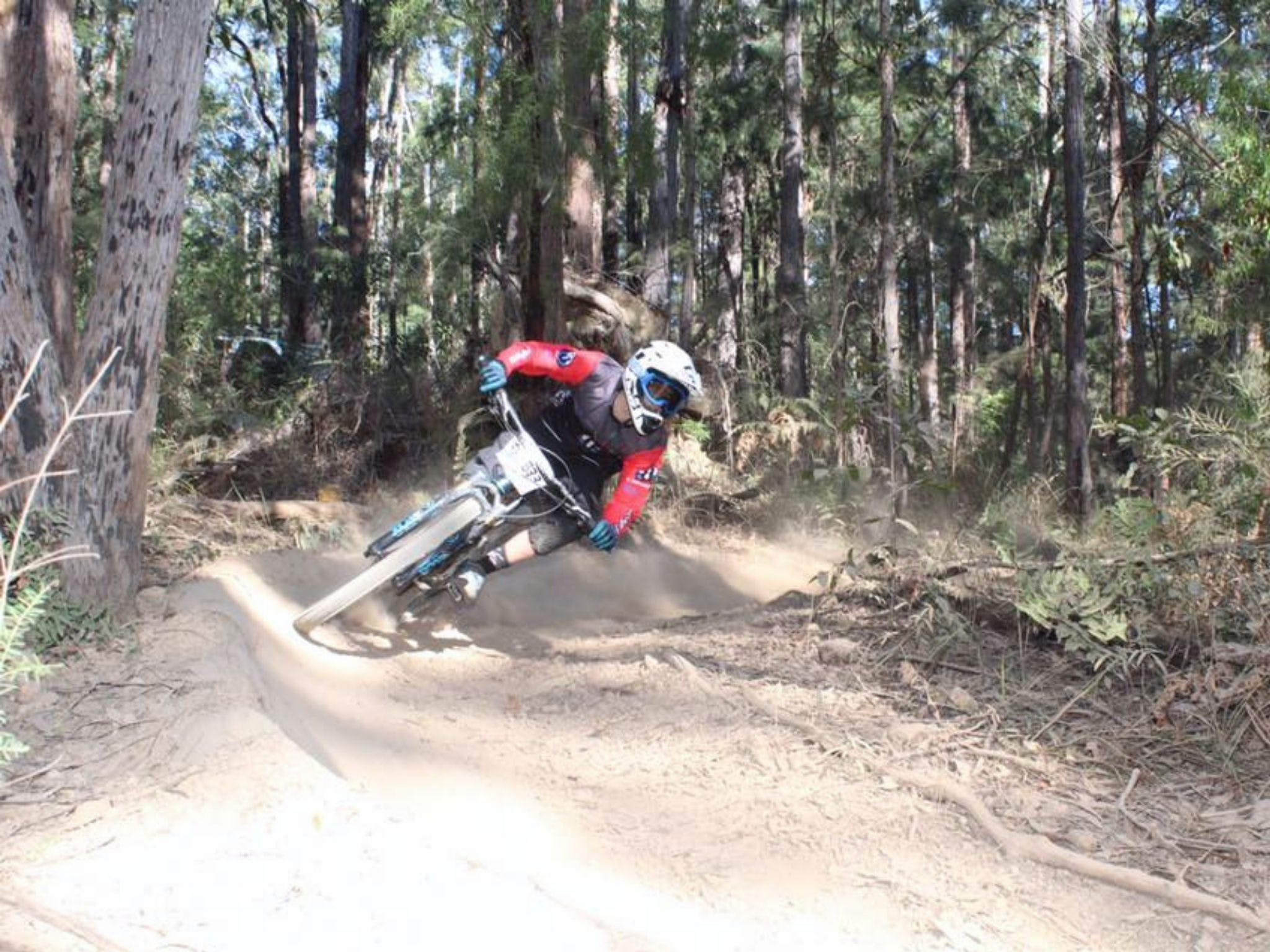 Jolly Nose Mountain Bike Park - Redcliffe Tourism
