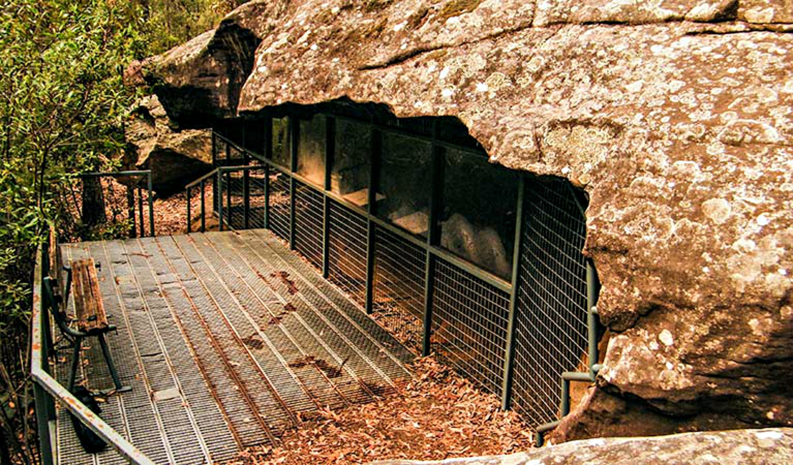 Red Hands Cave Walking Track - Blue Mountains National Park - Redcliffe Tourism