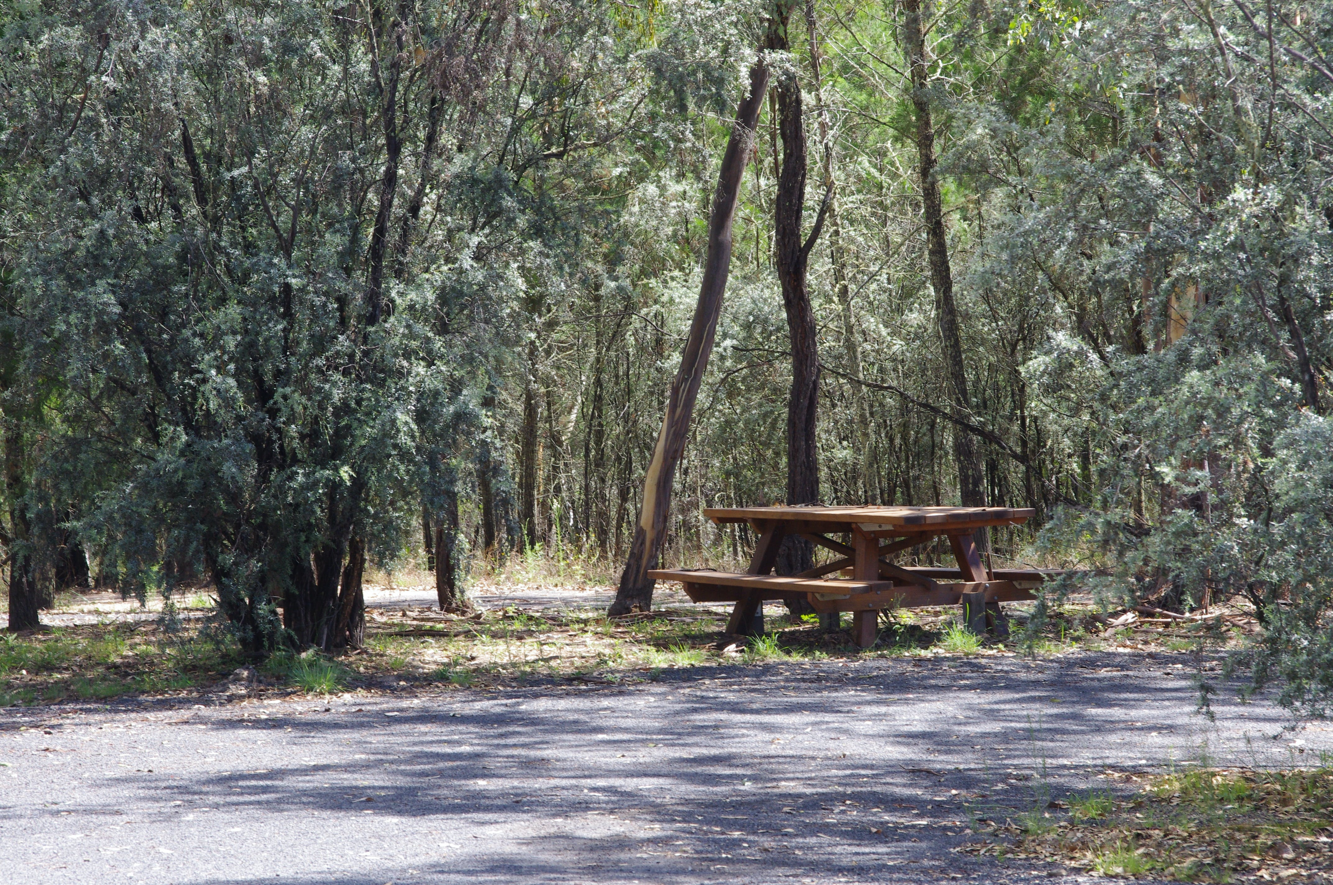 Goonoowigall State Conservation Area - Redcliffe Tourism