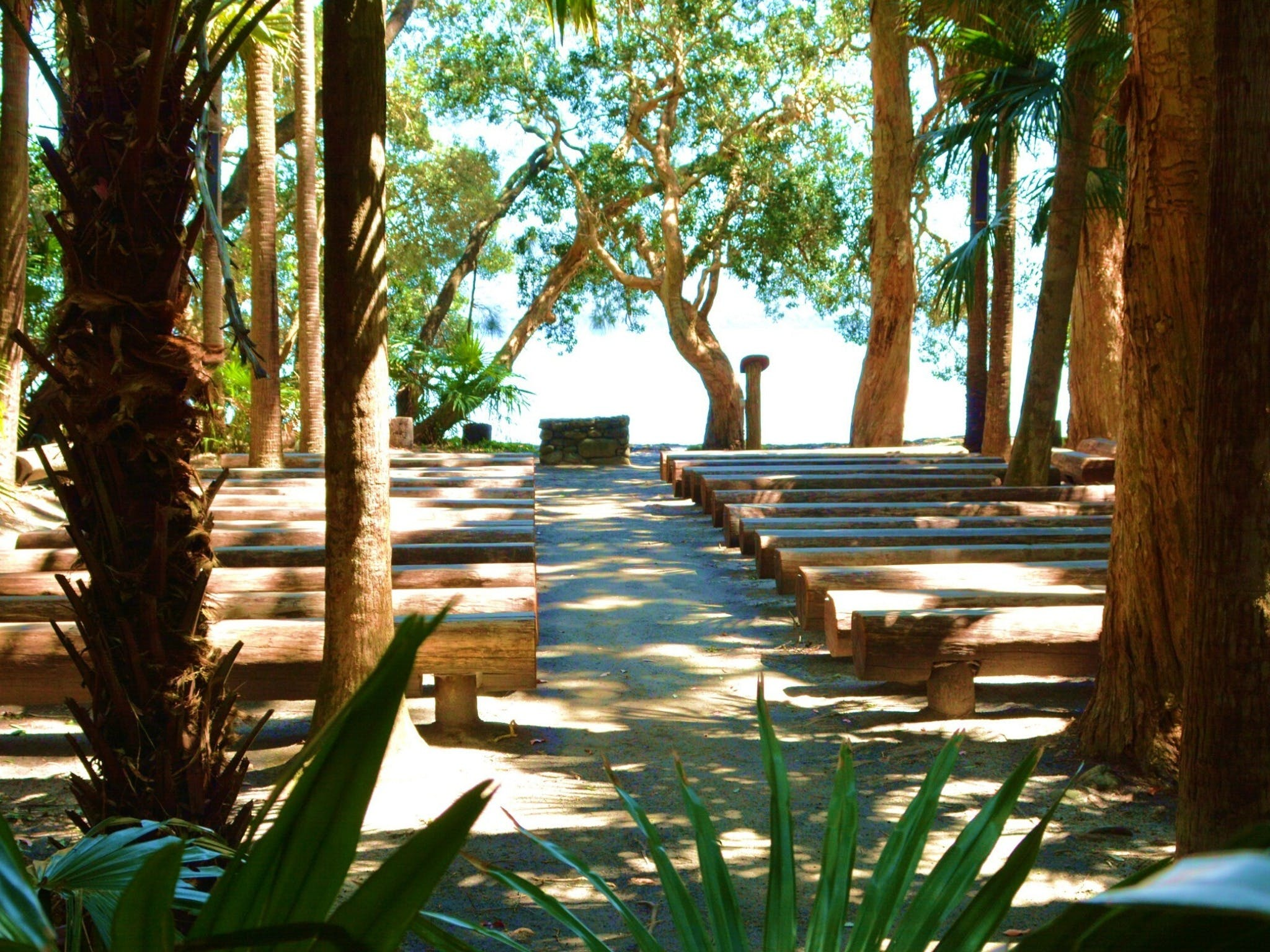 Green Cathedral - Redcliffe Tourism
