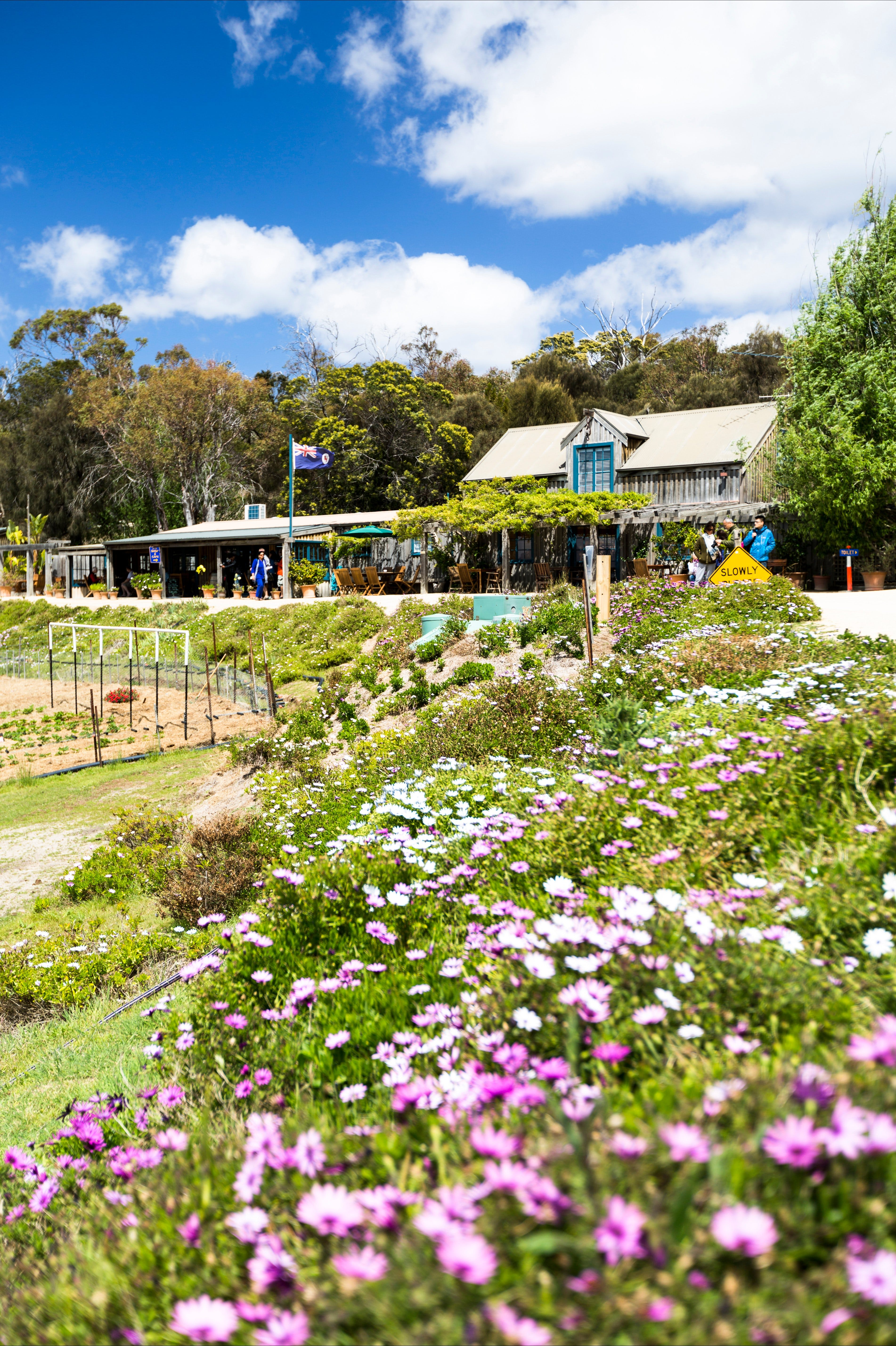Kate's Berry Farm - Redcliffe Tourism