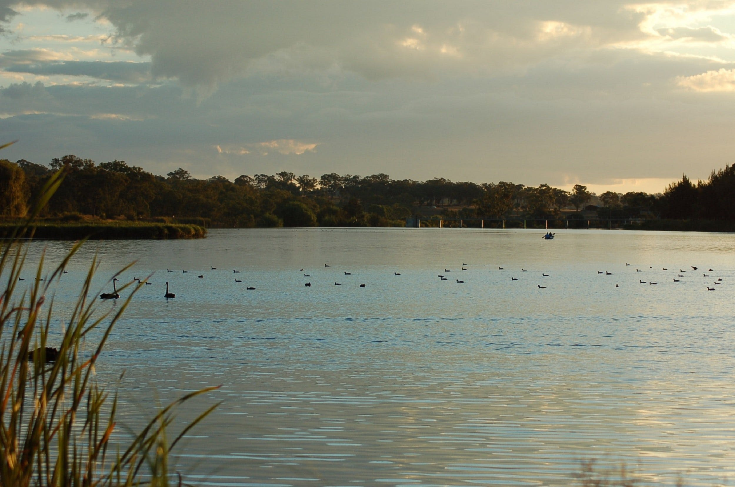 Lake Inverell Reserve - Redcliffe Tourism