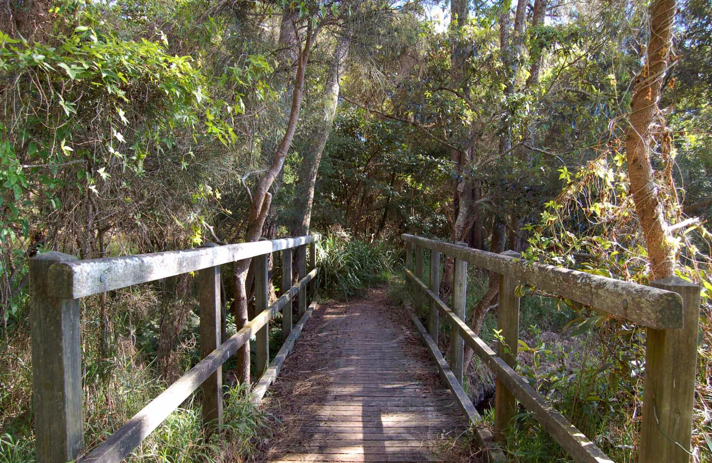 Awaba Bay Foreshore Walk - Redcliffe Tourism