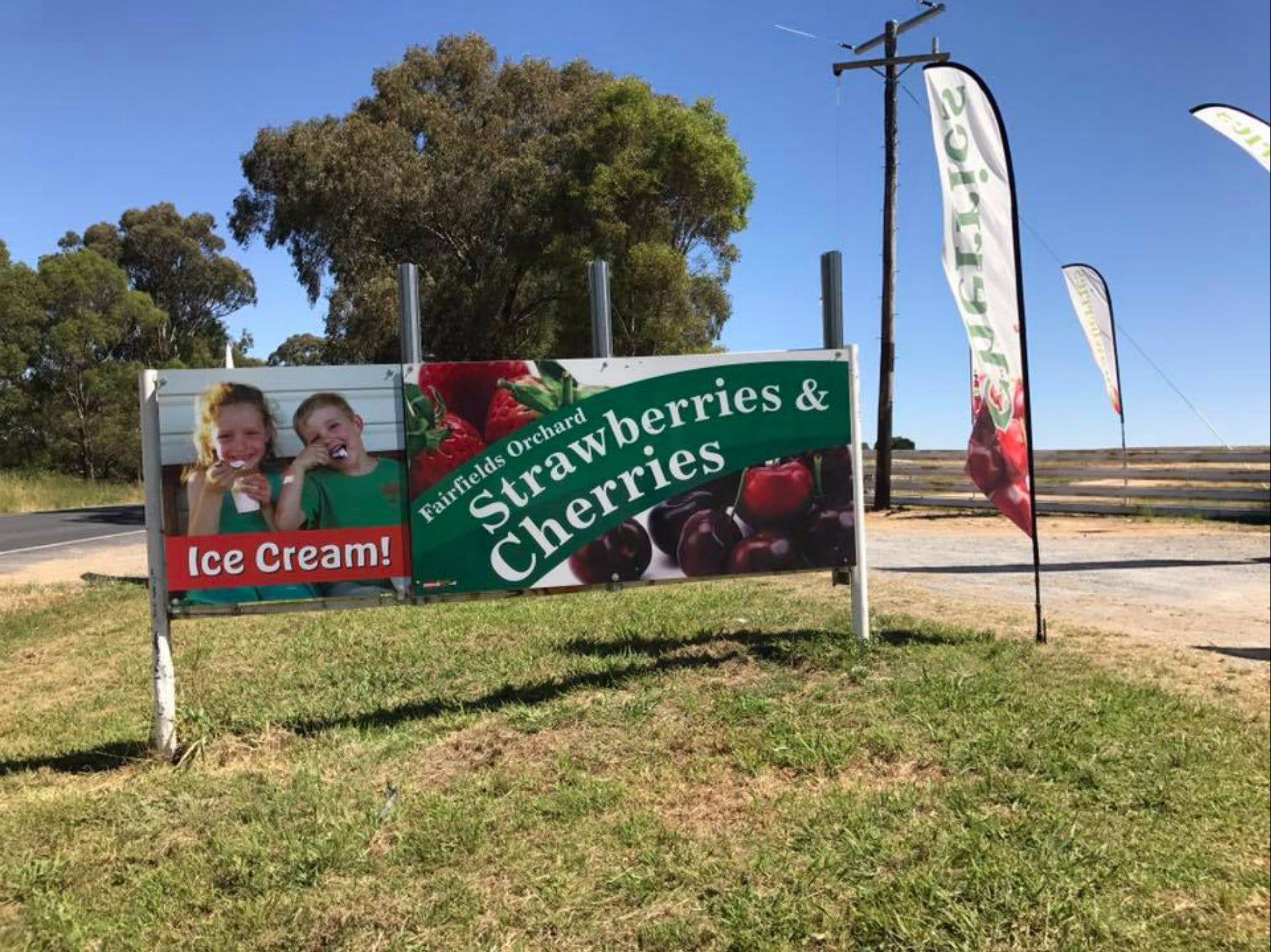 Fairfield Orchard - Redcliffe Tourism