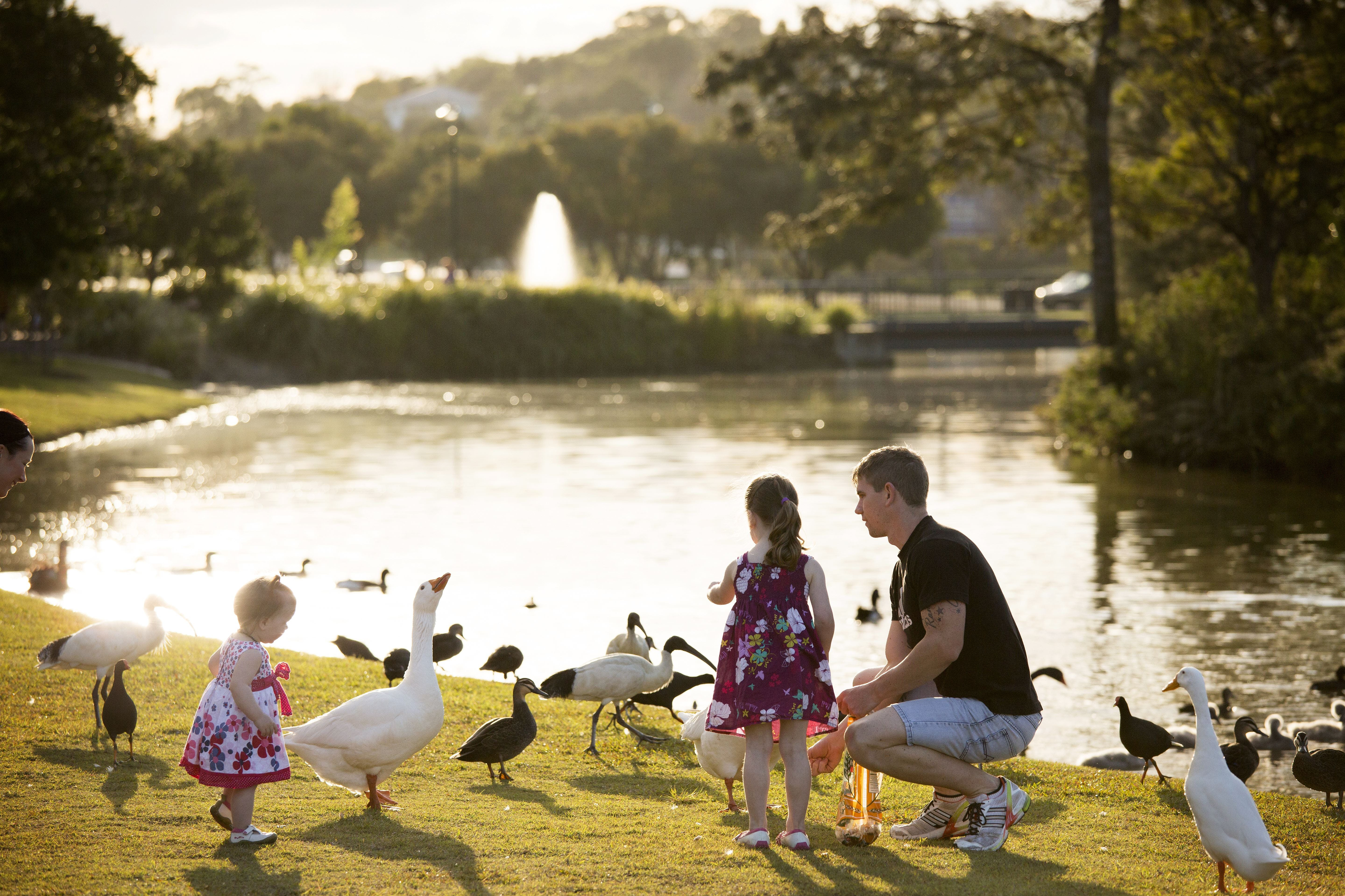 Lake Alford Recreational Park - Redcliffe Tourism
