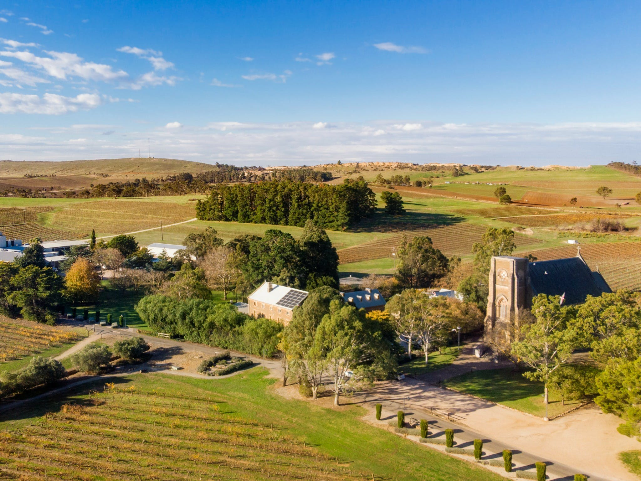 Sevenhill Cellars Weekday Tours - Redcliffe Tourism