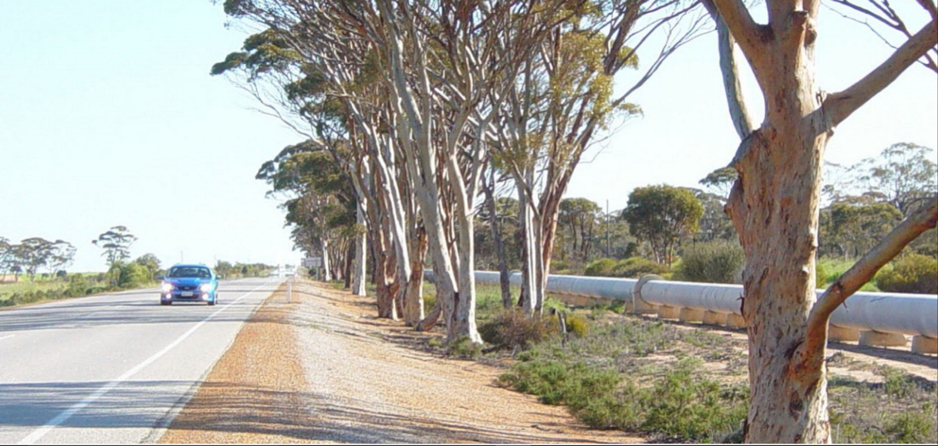 Golden Pipeline Heritage Trail - Redcliffe Tourism