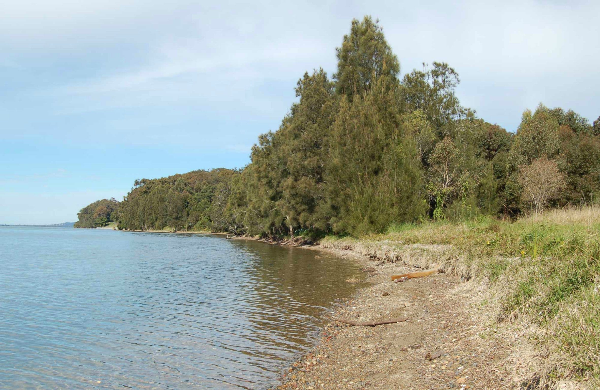 Lake Macquarie State Conservation Area - Redcliffe Tourism