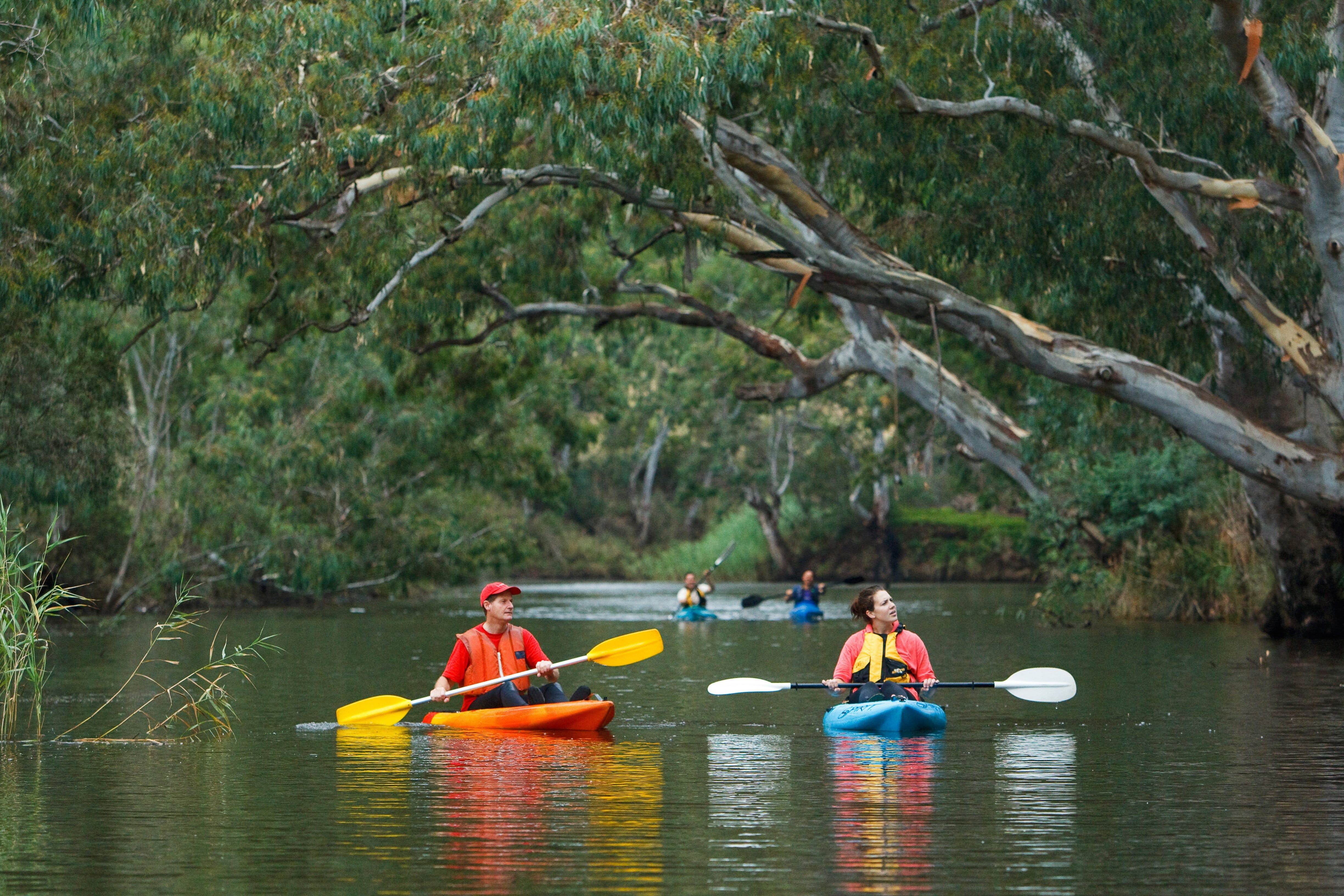 Maribyrnong River - Redcliffe Tourism
