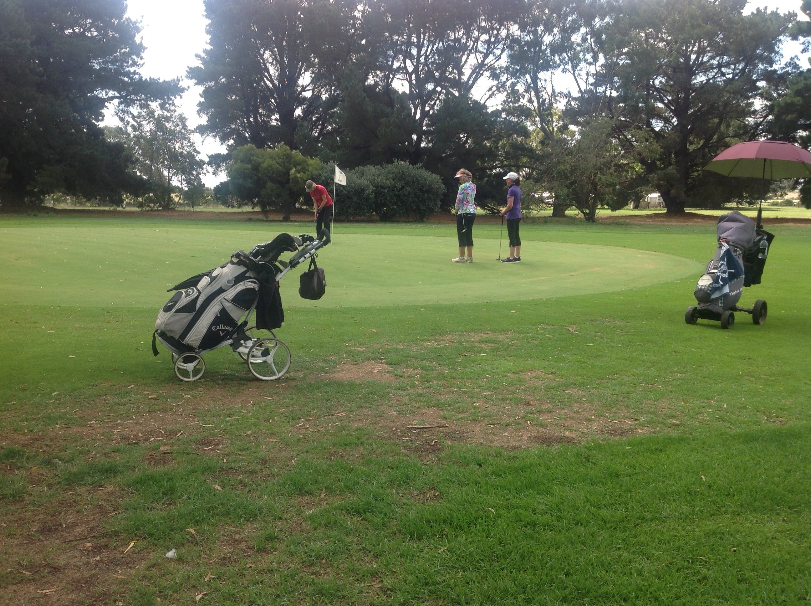 Mortlake Golf Club - Redcliffe Tourism