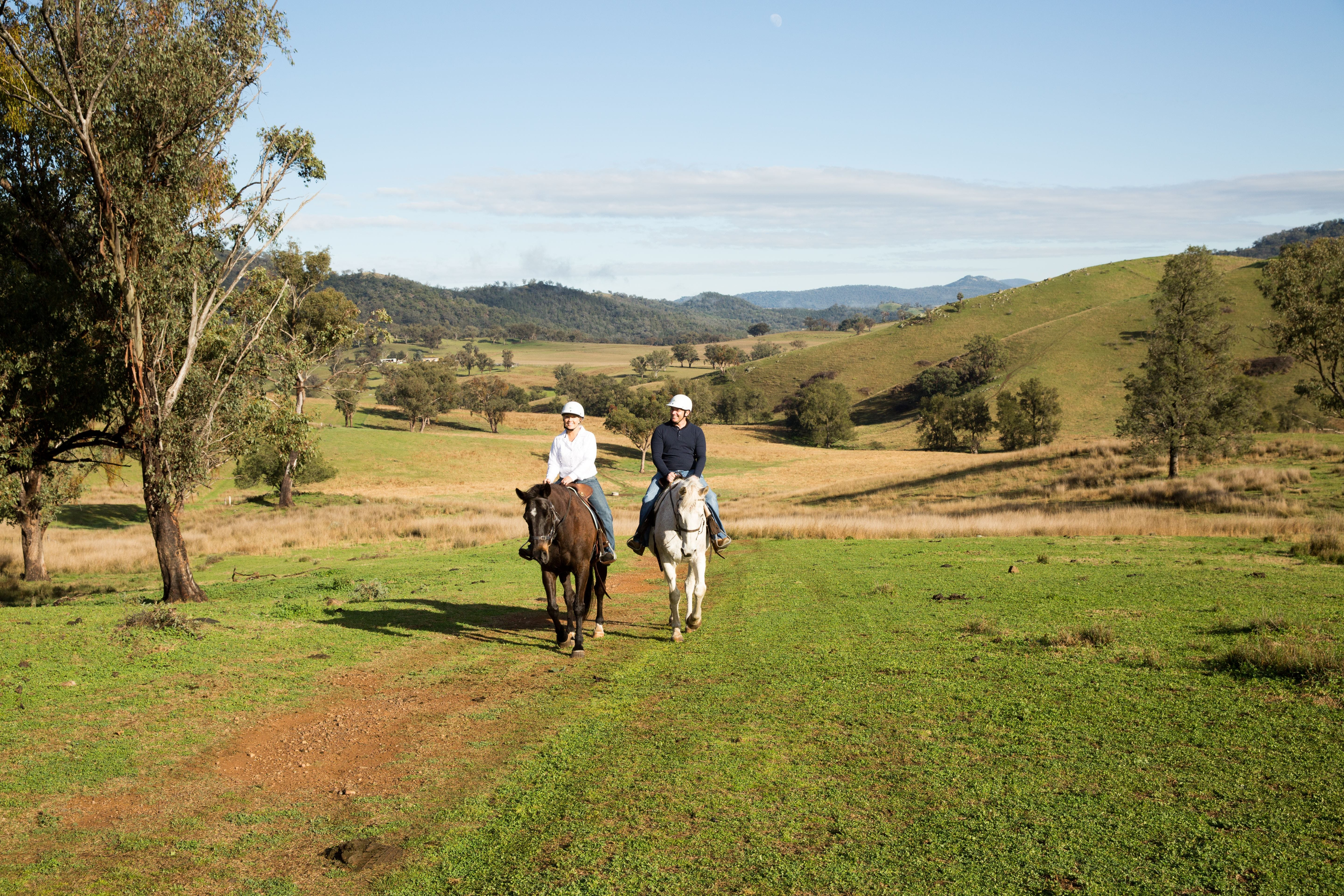 Tamworth and Kootingal Horse Riding Adventures - Redcliffe Tourism