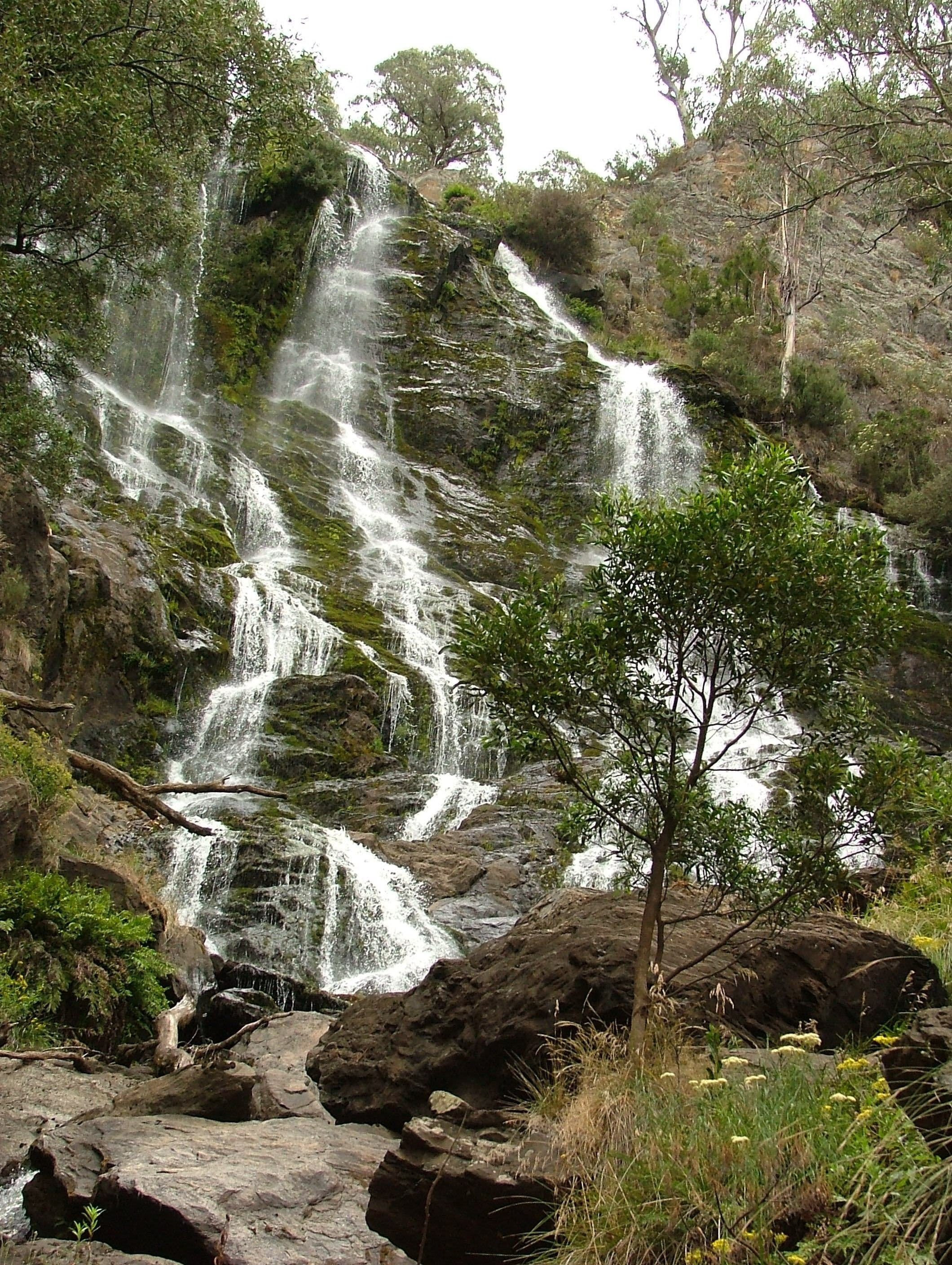 Buddong Falls Walking Track - Redcliffe Tourism