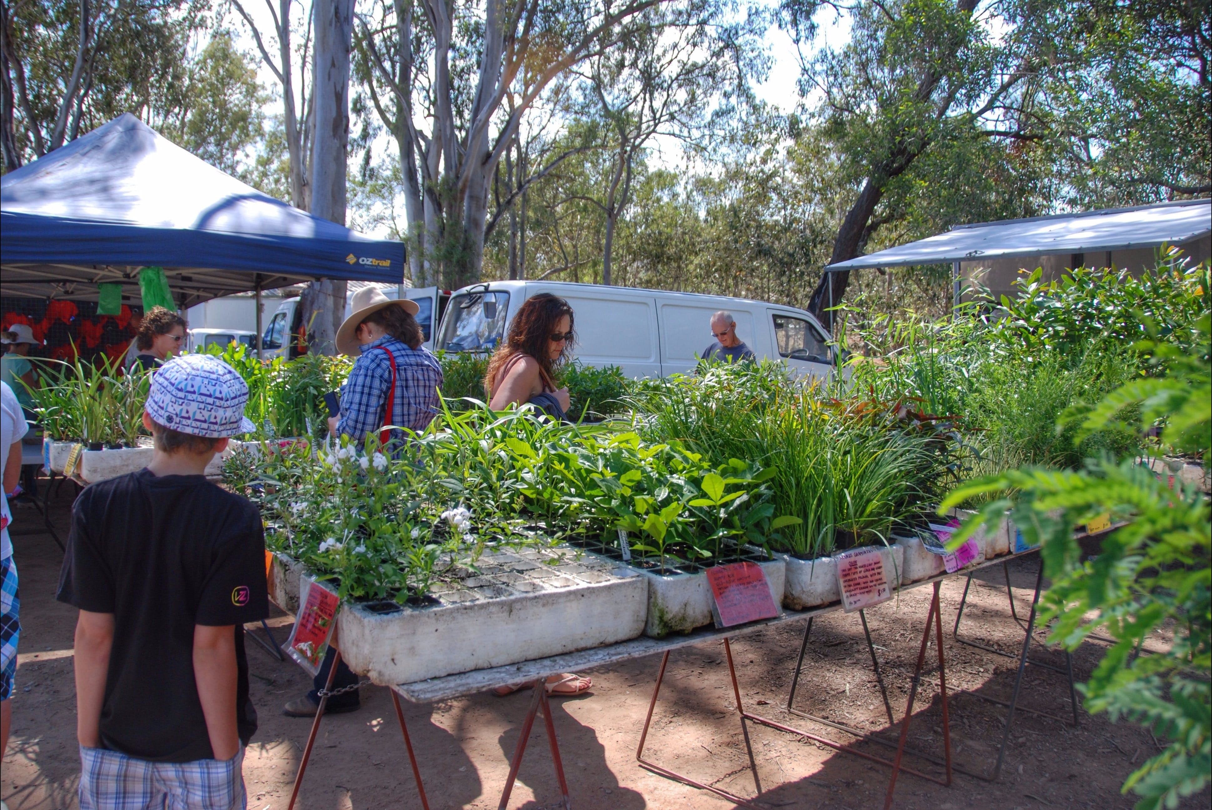 Fernvale Country Markets - Redcliffe Tourism