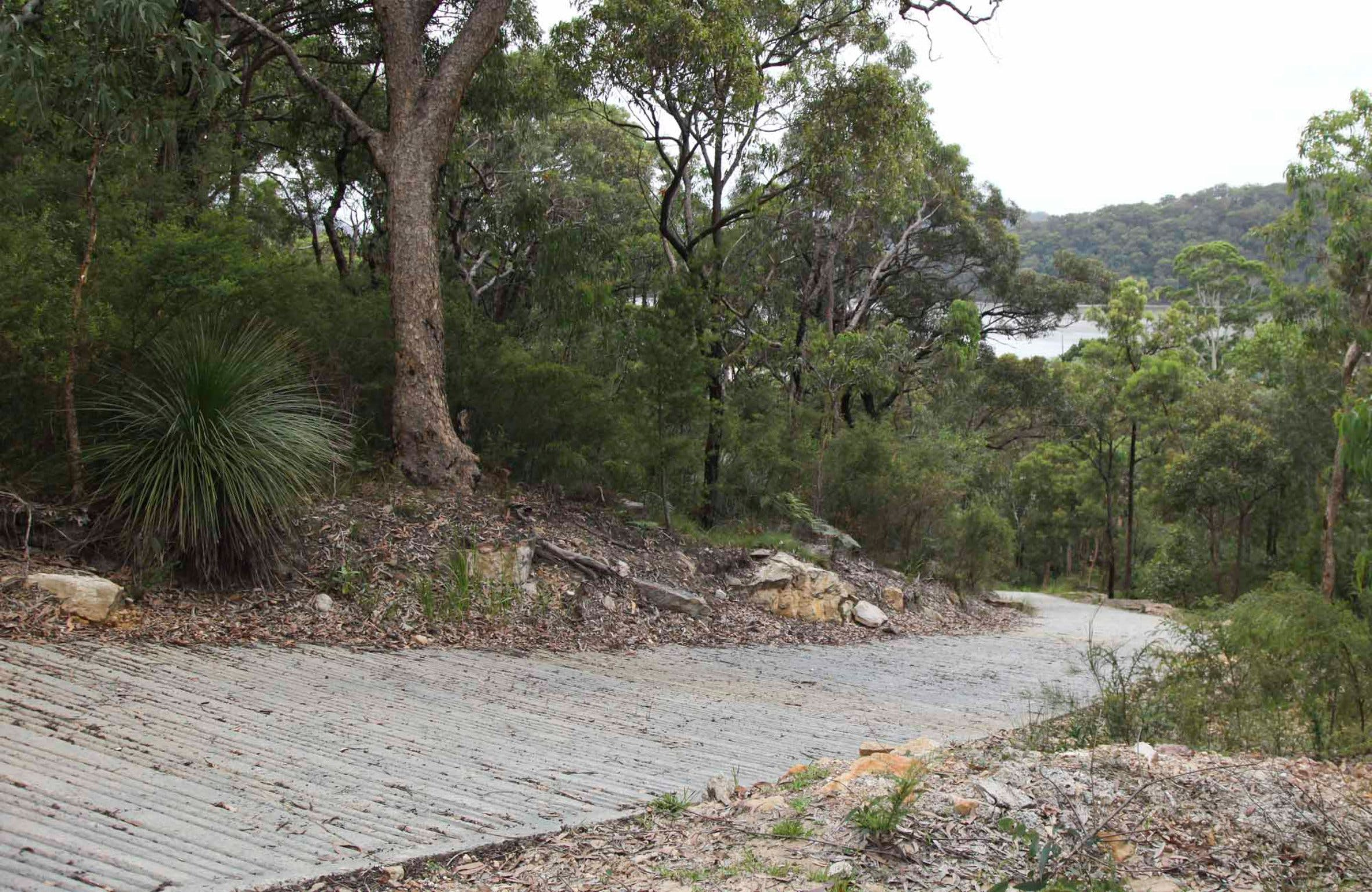 Great North Walk  Ku-ring-gai Chase National Park - Redcliffe Tourism