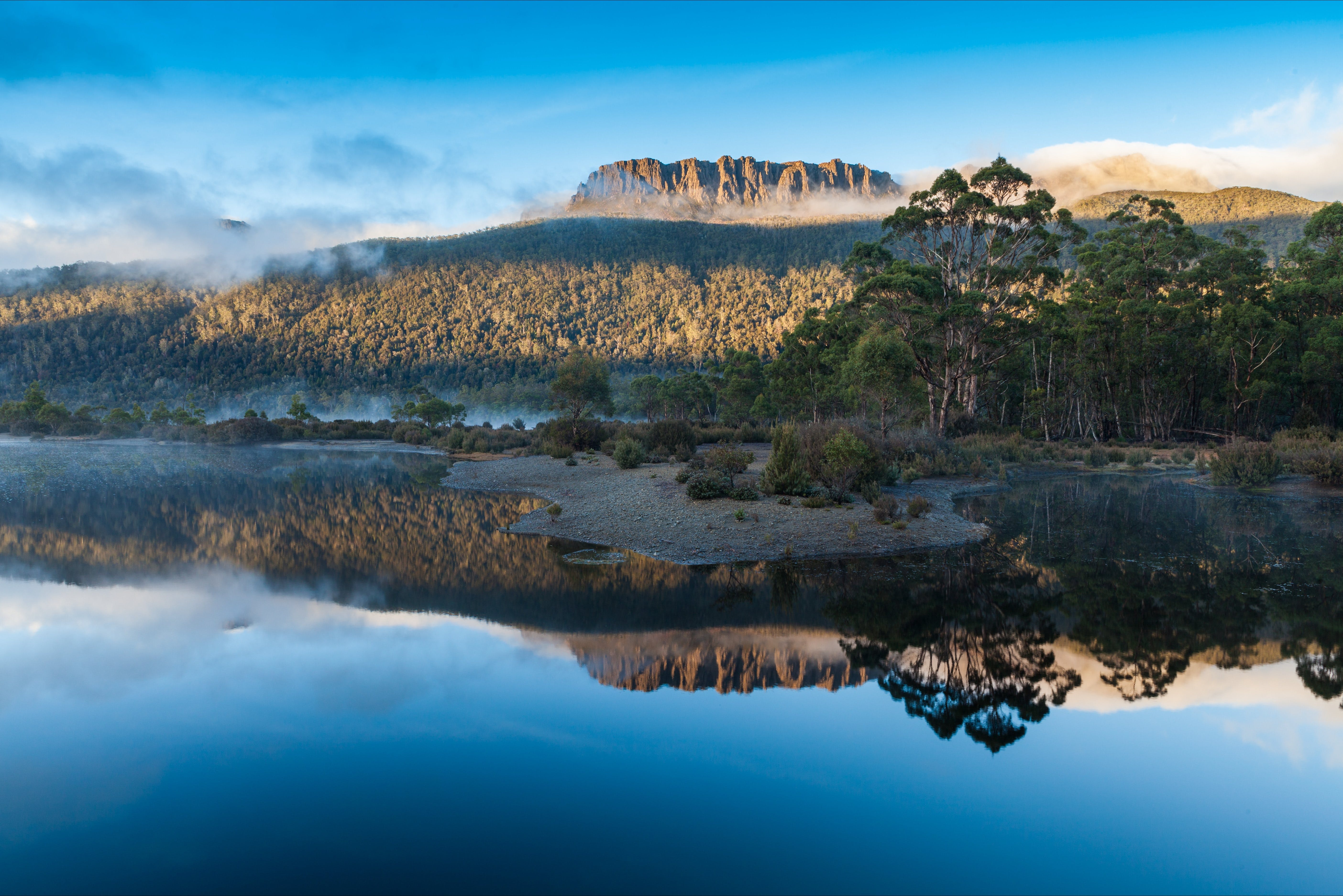 Lake St Clair Cradle Mountain  - Lake St Clair National Park - Redcliffe Tourism