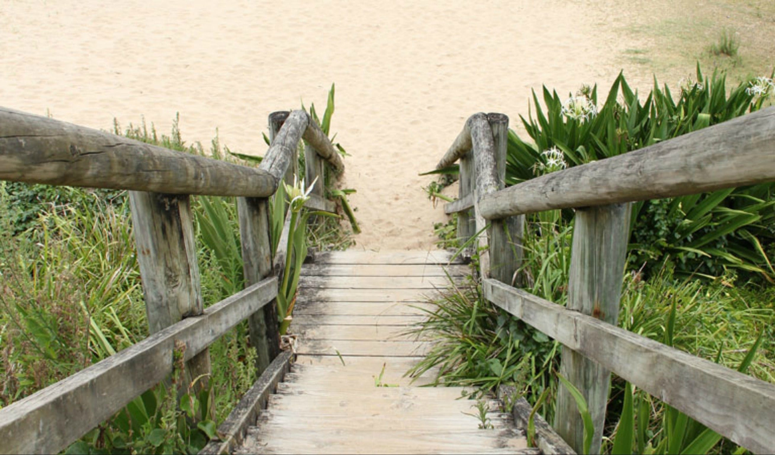 Pebbly Beach to Snake Bay walking track - Redcliffe Tourism